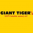 Giant Tiger Stores Ltd.